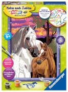 Ravensburger 28568 Malen nach Zahlen: Pferde im Sonnenuntergang